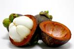 Garcinia Cambogia Φρούτο