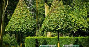 Πράσινο Πάρκο στην Πόλη